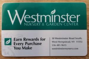 rewards-card