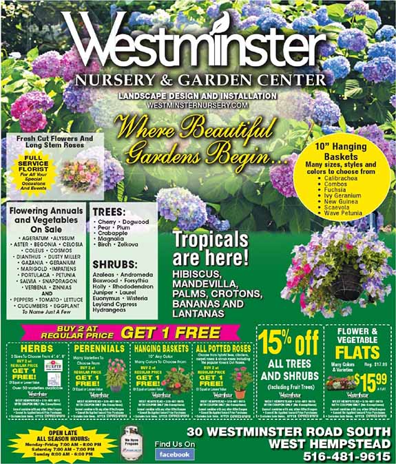 SAVINGS WITH WESTMINSTER NURSERY